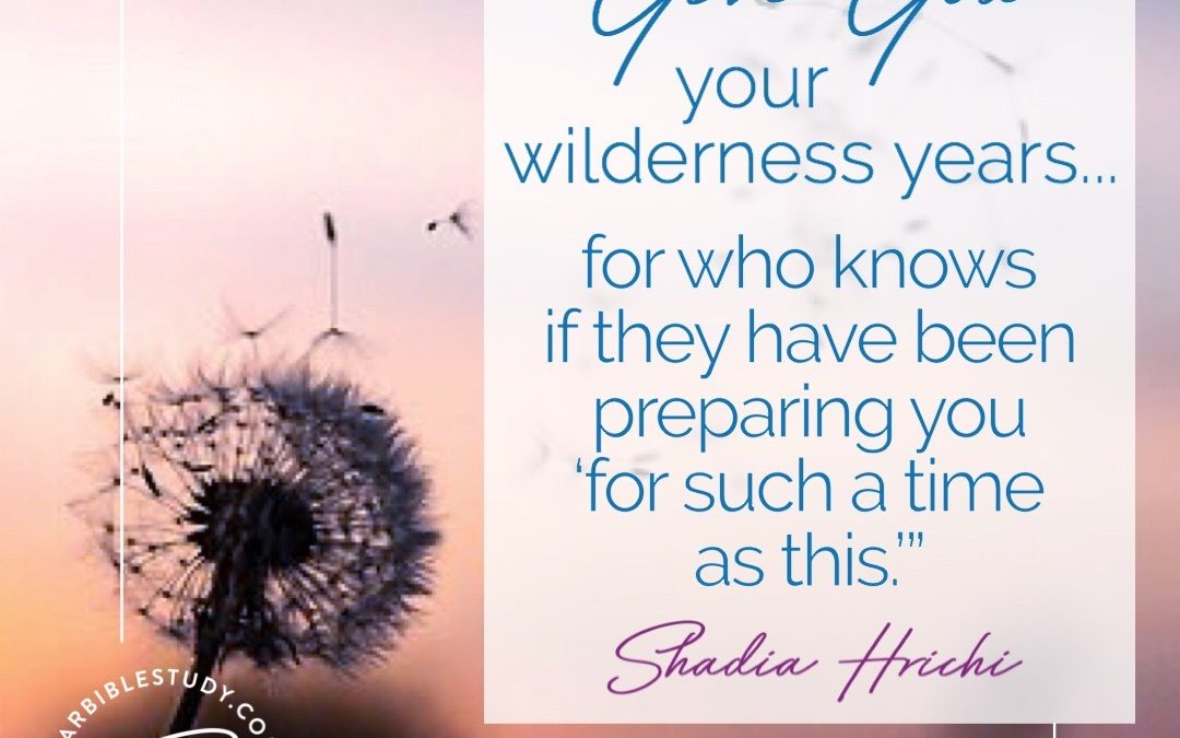 Let God Use Your Wilderness Years